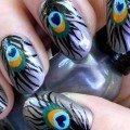 перо павлина дизайн на ногти фото